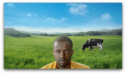 Swissmilk: Grüne Wiese für Lovely, graues Büro für Charles