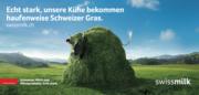 Lovelys neue grüne Wiese